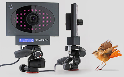 Câmeras infravermelho BTS Smart DX